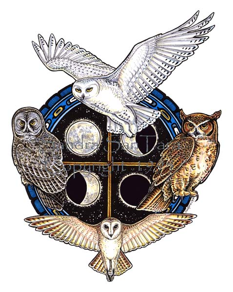 Owl Spirit Shield